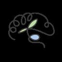 Seed Psychology Ltd.